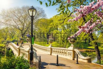 Fotomural Puente de arco en Central Park en primavera día soleado, la ciudad de Nueva York