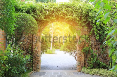 Fotomural Puerta de entrada de arco de piedra cubierta de hiedra. Arco al parque con luz solar.