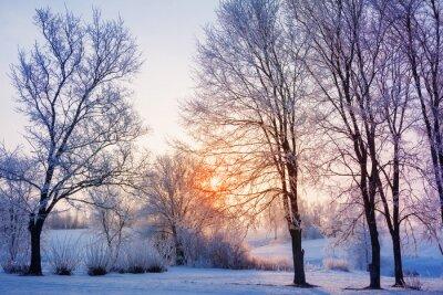 Fotomural puesta de sol de invierno