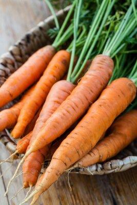 Fotomural Racimo de zanahorias frescas