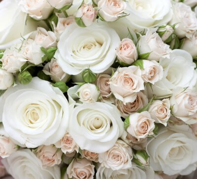 Fotomural Ramo de novia de rosas blancas pinkand