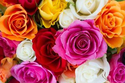 Fotomural ramo de rosas frescas