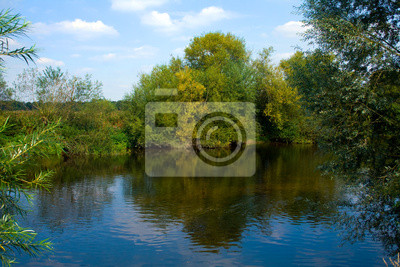 Fotomural río