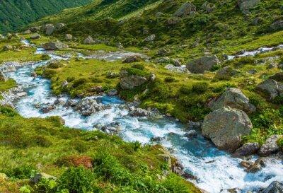 Fotomural Río alpino escénico