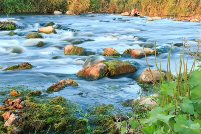 Fotomural Río caudaloso