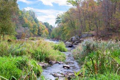 Fotomural Río de montaña en otoño