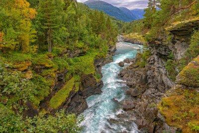 Fotomural Río de montaña salvaje entre acantilados escarpados
