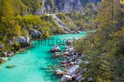 Fotomural Río soca en eslovenia, europa