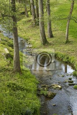 Fotomural rivière