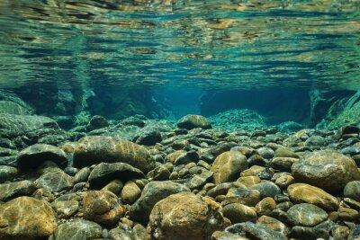 Fotomural Rocas bajo el agua en el cauce del río con agua dulce clara, río Dumbea, Grande Terre, Nueva Caledonia