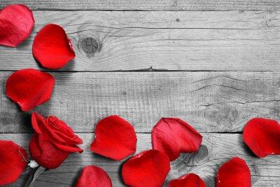 Fotomural Rosa roja y pétalos sobre fondo blanco y negro de madera