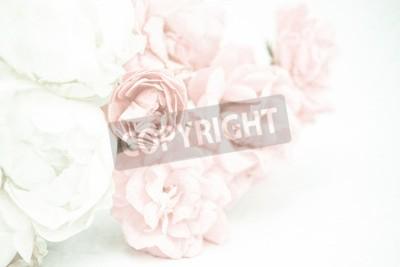 Fotomural Rosas de color dulce en suave y el estilo de desenfoque en textura de papel de mora