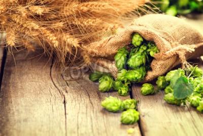Fotomural Salto en oídos de la bolsa y del trigo en la vieja mesa agrietada de madera. Cerveza cerveza concepto. Ingrediente para cerveza de cerveza. Conos de lúpulo recién cosechados de belleza y portarretrato