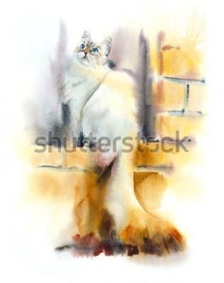 Fotomural Siberian cat sits on the window. Watercolor hand drawn illustration