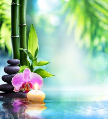Fotomural spa todavía la vida - velas y piedra con el bambú en la naturaleza en el agua