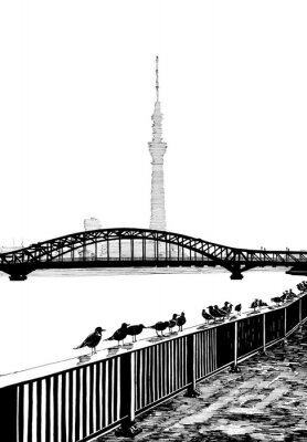 Fotomural Sumida bridge ver
