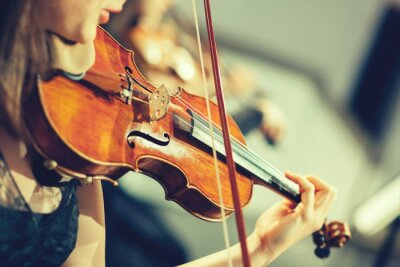 Fotomural Symphony orchestra on stage, hands playing violin