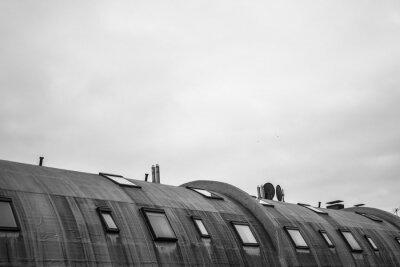 Fotomural techo redondo