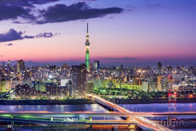 Fotomural Tokio, Japón Skyline
