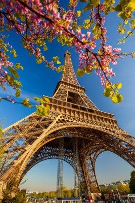 Fotomural Torre Eiffel durante la primavera en París, Francia