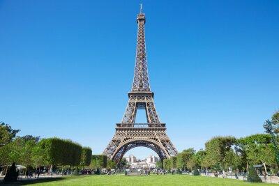 Fotomural Torre Eiffel, soleado día de verano con cielo azul y verde Campo de Marte