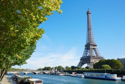 Fotomural Torre Eiffel y el río Sena vista con ramas de árboles verdes, soleado
