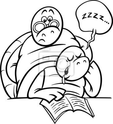 Tortuga durmiendo en la página para colorear lección fotomural ...