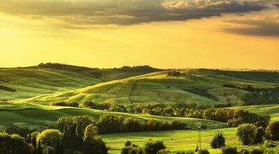 Fotomural Toscana primavera, colinas a la puesta del sol. Paisaje rural. Verde