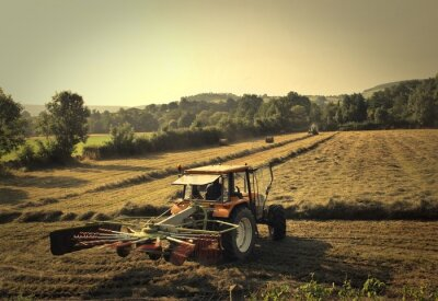 Fotomural Tractor