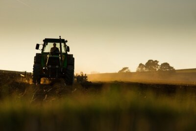 Fotomural Tractor arando el campo en la puesta del sol