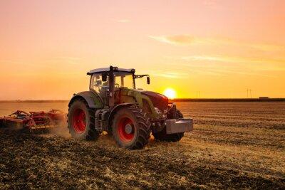 Fotomural Tractor en el campo de la cebada por la puesta del sol.