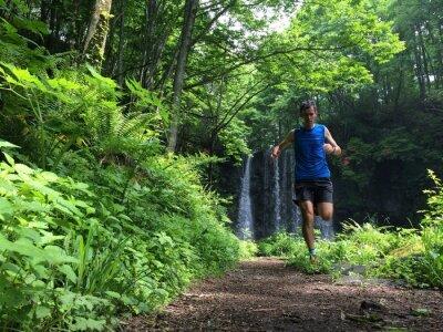 Fotomural TrailRunner el sendero en el bosque
