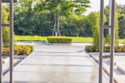 Fotomural Trayectoria concreta de hormigón en un jardín verde pacífico