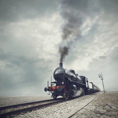 Fotomural tren negro