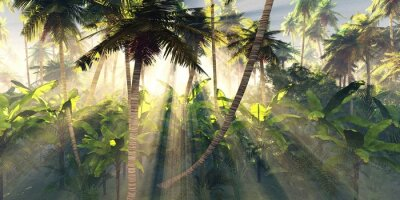 Fotomural Tropical forest in the morning sun, jungle in the fog, palm trees in the haze, 3D rendering