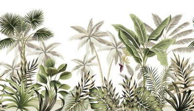 Fotomural Tropical vintage botanical landscape, palm tree, banana tree, plant floral seamless border white background. Exotic green jungle wallpaper.