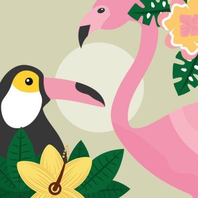 Fotomural tucán de aves tropicales de verano y ilustración de vector de flamenco