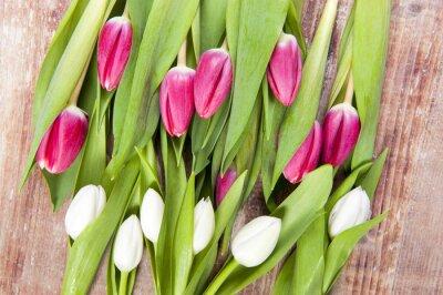 Fotomural tulipanes