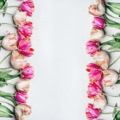 Fotomural Tulipanes bastante color pastel con gotas de agua, marco floral, vista superior. Concepto de flores de primavera