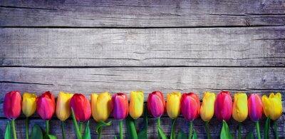 Fotomural Tulipanes en una fila en el tablón de la vendimia - fondo de primavera