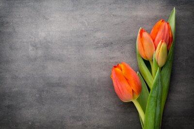 Fotomural Tulipanes, naranja en el fondo gris.