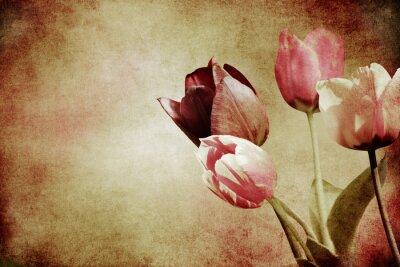 Fotomural Tulipanes teñidos texturizados