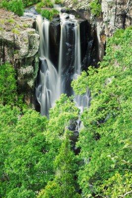 Fotomural Ubicado en la Reserva Denham.