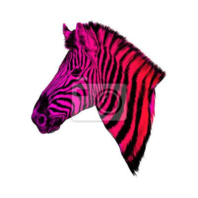 Un Perfil De Cabeza De Cebra Vector De Dibujo A Color Rosa Y