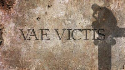 Fotomural Vae Victis. Frase latina para la desgracia de los vencidos