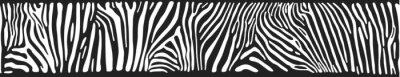 Fotomural Vector background with zebra skin