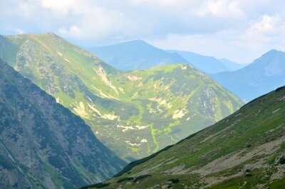 Fotomural Verano paisaje de montaña. Picos verdes en las montañas polacas de Tatra.