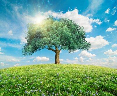 Fotomural Verde paisaje de primavera de árboles