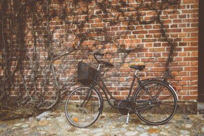 Fotomural Vintage bicicleta apoyada en la pared