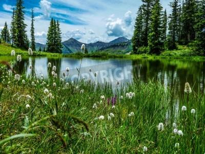 Fotomural Vista de Paridise Lago en Cuenca Paridise cerca de Crested Butte Colorado